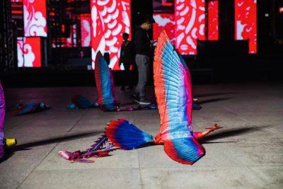 Phoenix ornithopter13