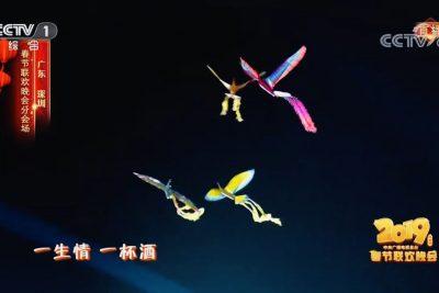 Phoenix ornithopter15