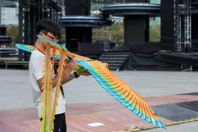 Phoenix ornithopter6