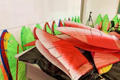 Phoenix ornithopter8